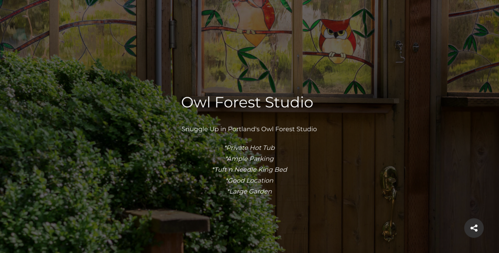 Owl Forest Studio